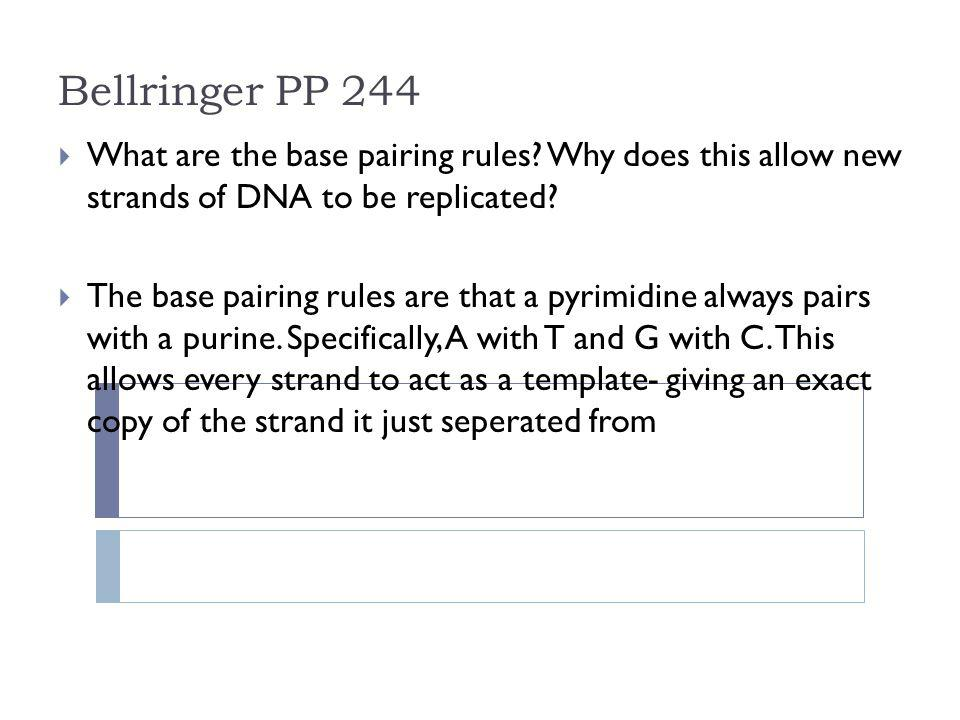 Bellringer PP 244 What are the base pairing rules Why does this allow new strands of DNA to be replicated