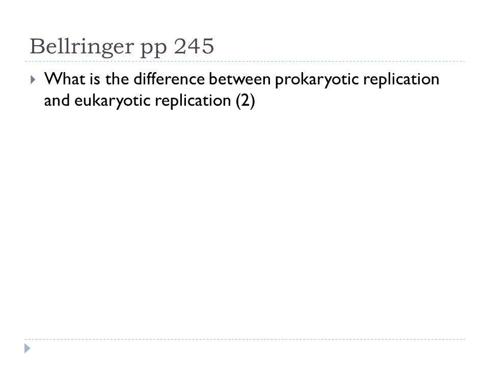 Bellringer pp 245 What is the difference between prokaryotic replication and eukaryotic replication (2)