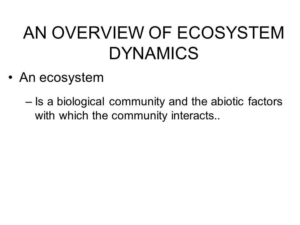 AN OVERVIEW OF ECOSYSTEM DYNAMICS