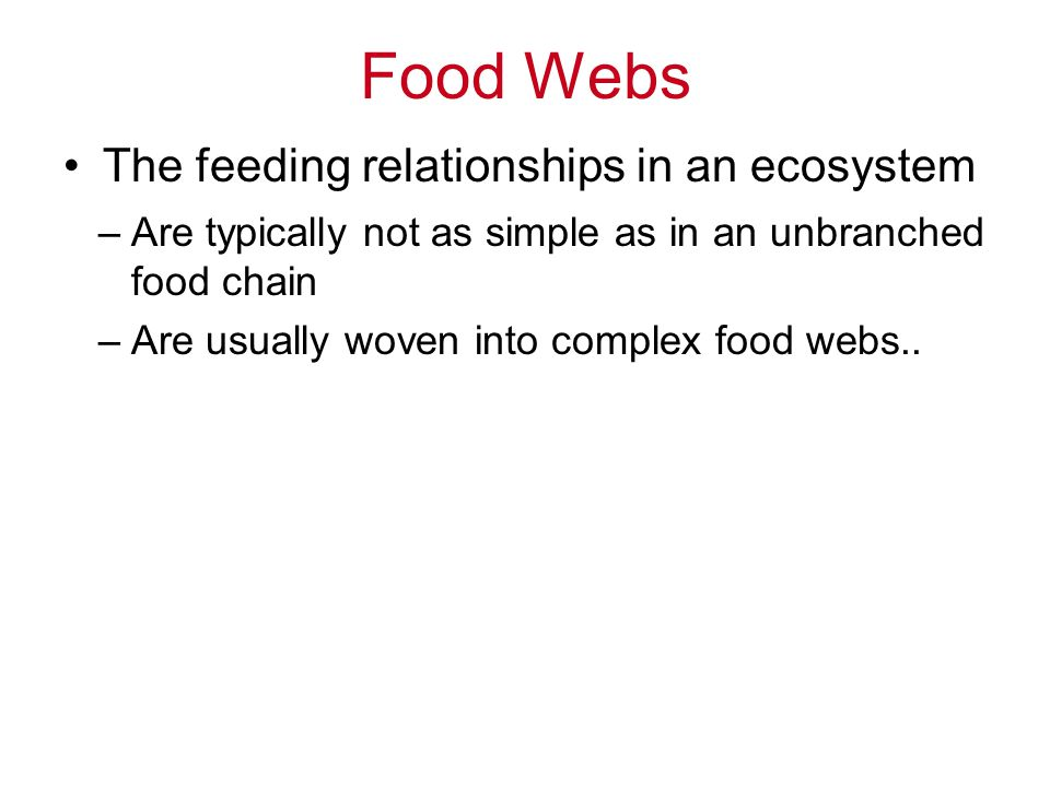 Food Webs The feeding relationships in an ecosystem