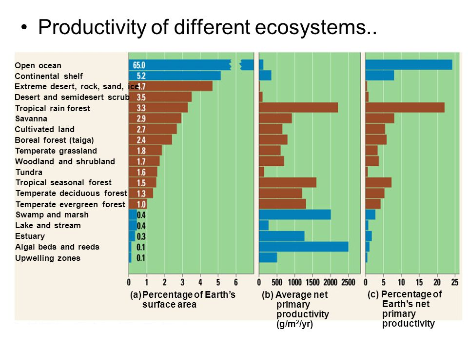 Productivity of different ecosystems..