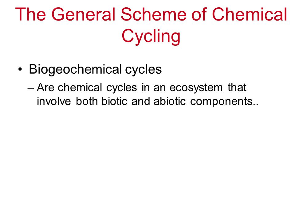 The General Scheme of Chemical Cycling