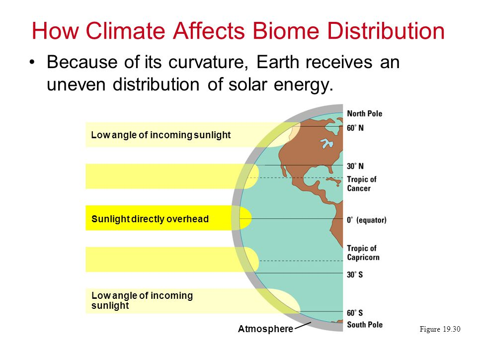 How Climate Affects Biome Distribution