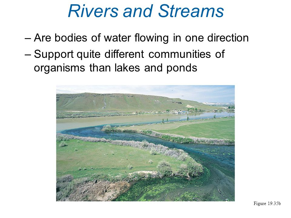 Rivers and Streams Are bodies of water flowing in one direction