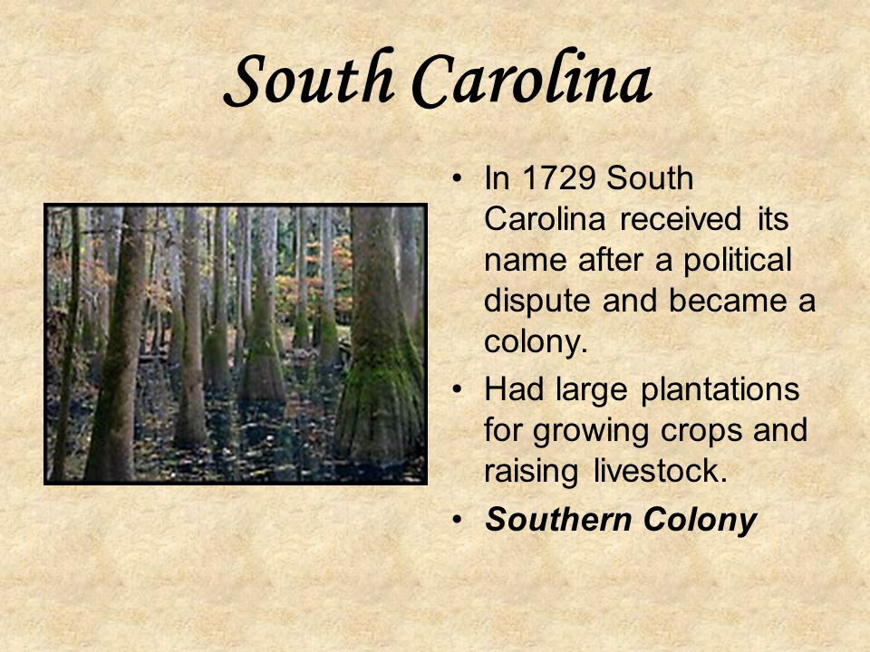 South Carolina In 1729 South Carolina received its name after a political dispute and became a colony.