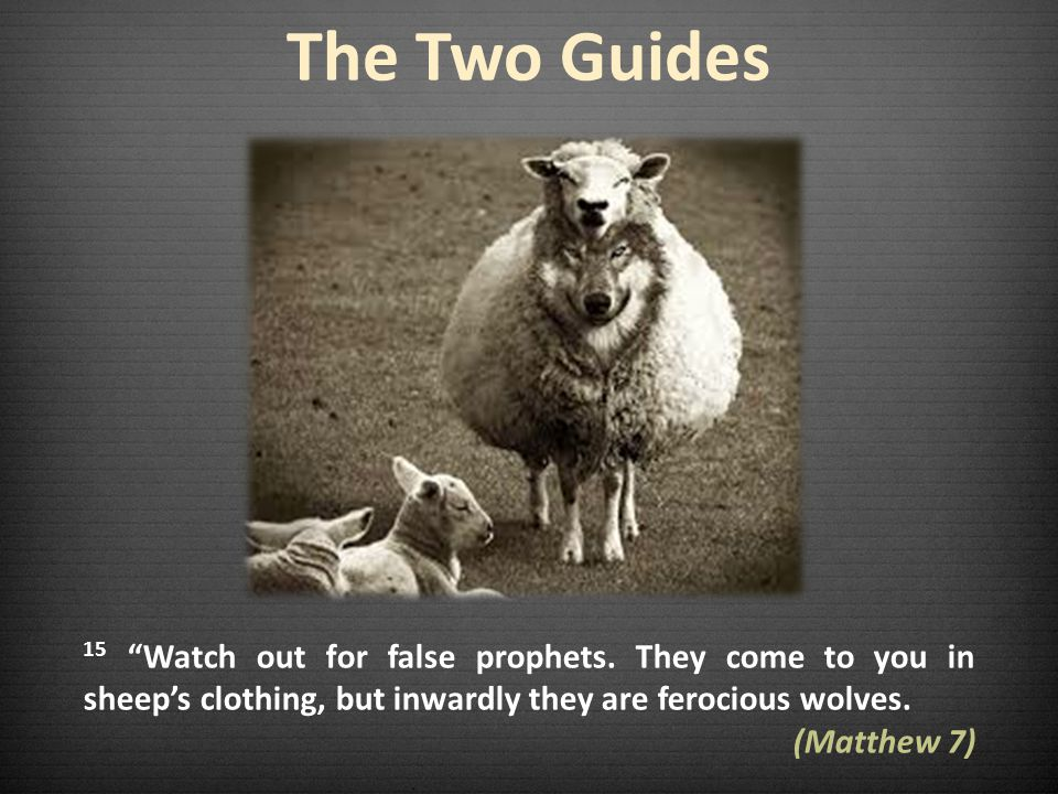 The Two Guides 15 Watch out for false prophets. They come to you in sheep's clothing, but inwardly they are ferocious wolves.