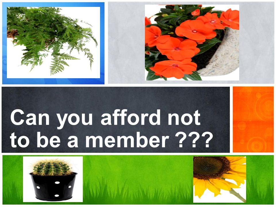 Can you afford not to be a member