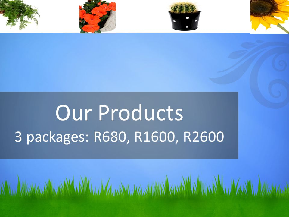 Our Products 3 packages: R680, R1600, R2600