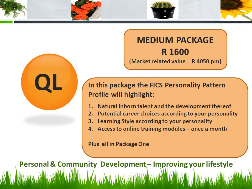 MEDIUM PACKAGE R 1600. (Market related value = R 4050 pm) QL. In this package the FICS Personality Pattern Profile will highlight: