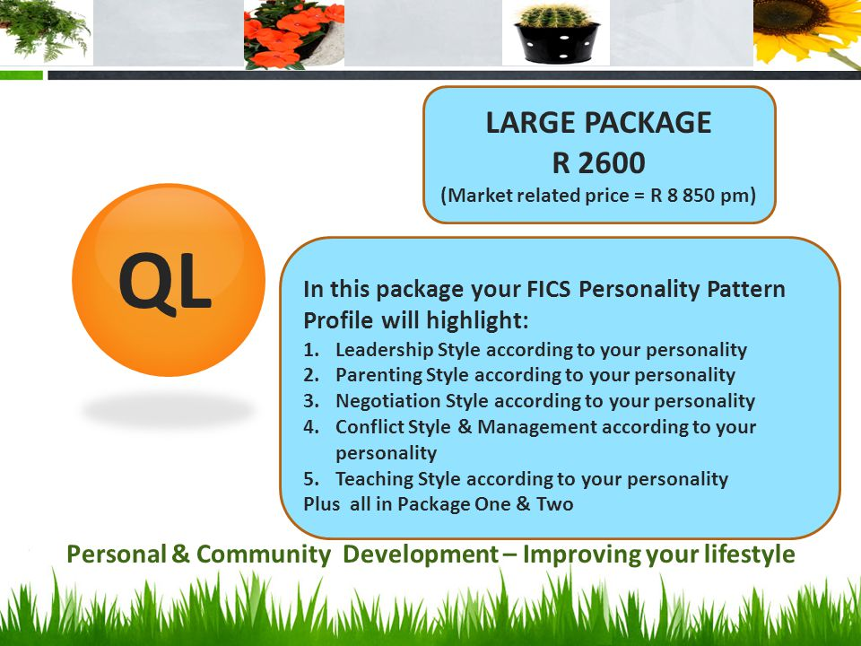 LARGE PACKAGE R 2600. (Market related price = R 8 850 pm) QL. In this package your FICS Personality Pattern Profile will highlight: