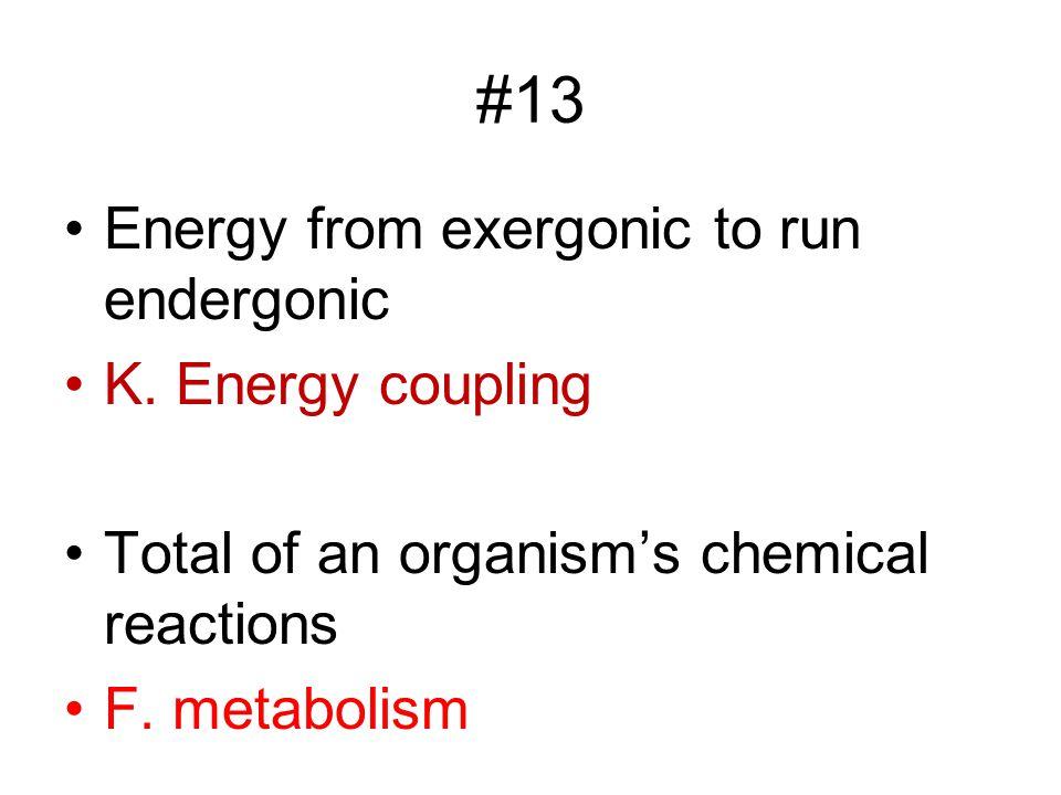#13 Energy from exergonic to run endergonic K. Energy coupling