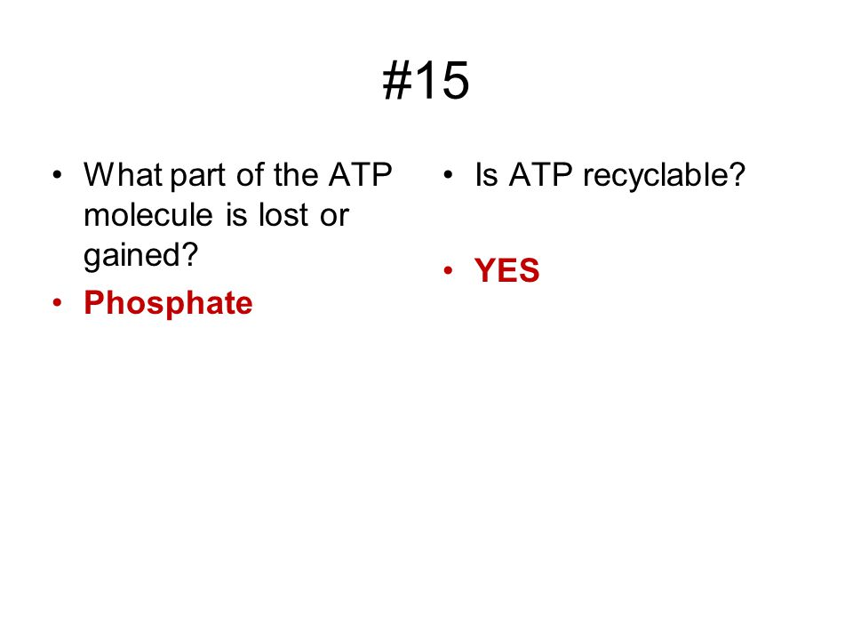 #15 What part of the ATP molecule is lost or gained Phosphate