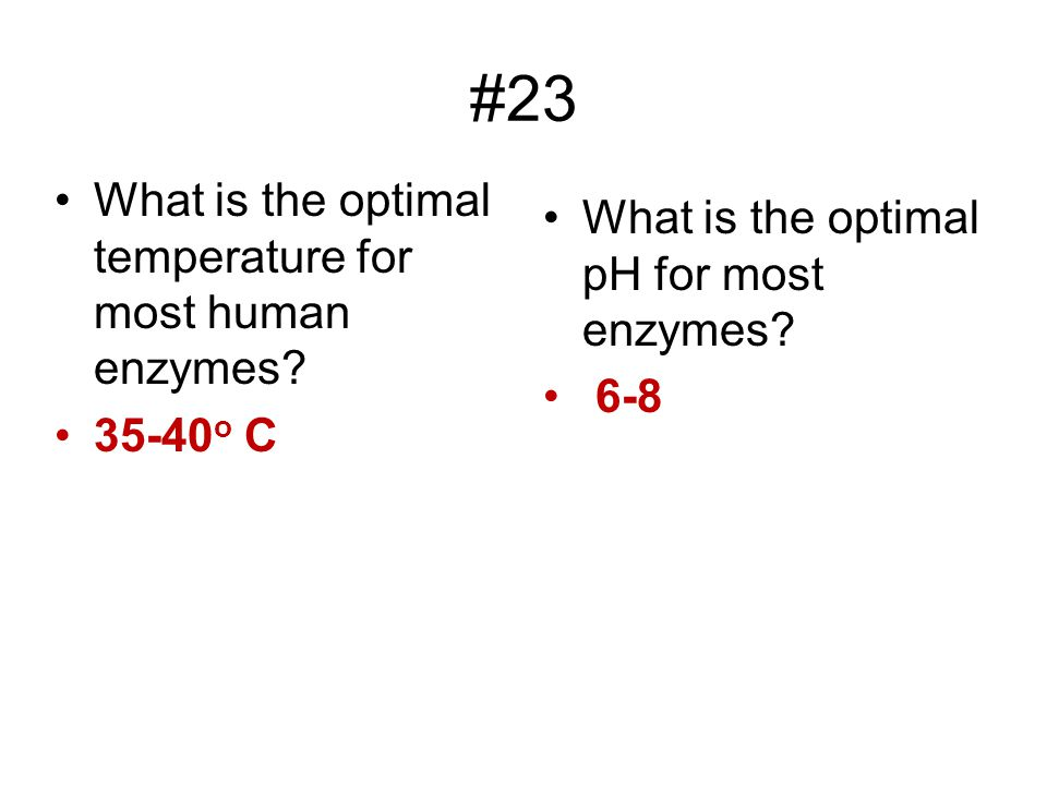 #23 What is the optimal temperature for most human enzymes
