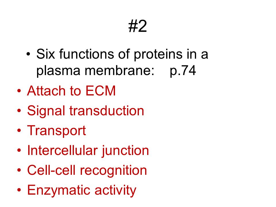 #2 Six functions of proteins in a plasma membrane: p.74 Attach to ECM