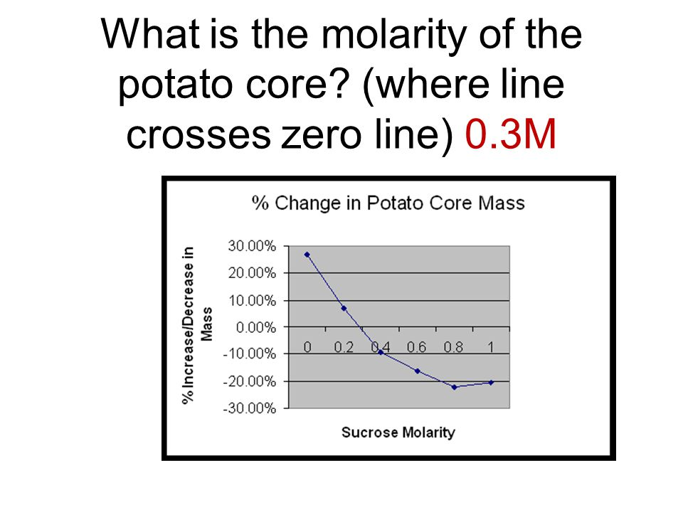 What is the molarity of the potato core