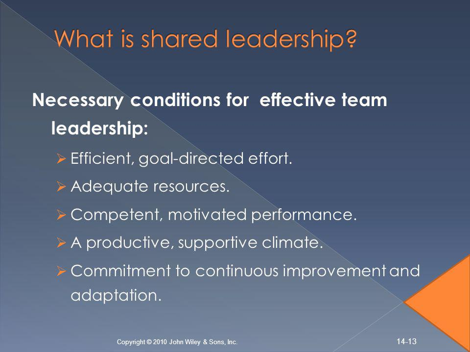 What is shared leadership
