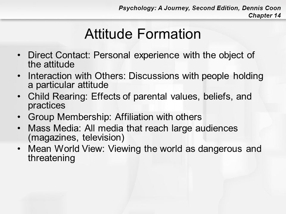 Attitude Formation Direct Contact: Personal experience with the object of the attitude.
