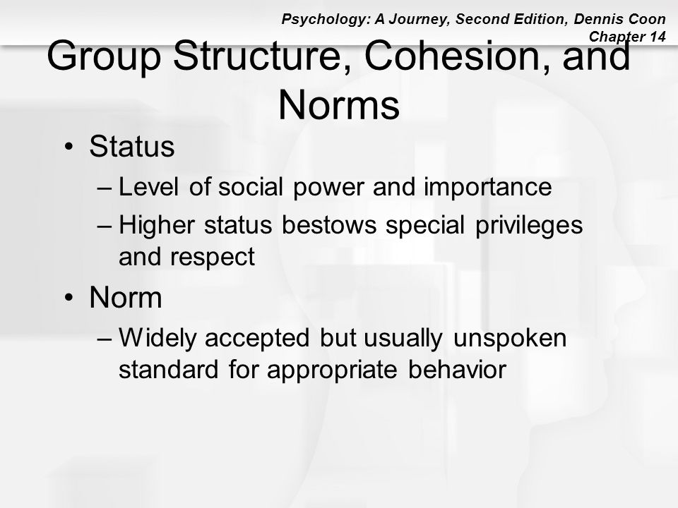 Group Structure, Cohesion, and Norms