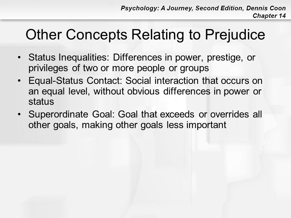 Other Concepts Relating to Prejudice