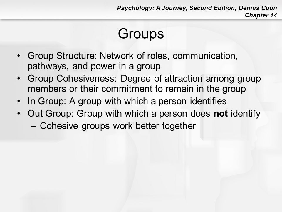 Groups Group Structure: Network of roles, communication, pathways, and power in a group.