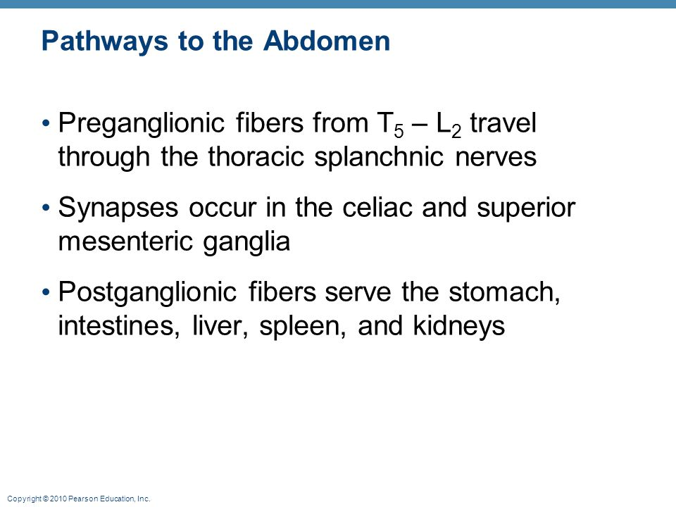 Pathways to the Abdomen