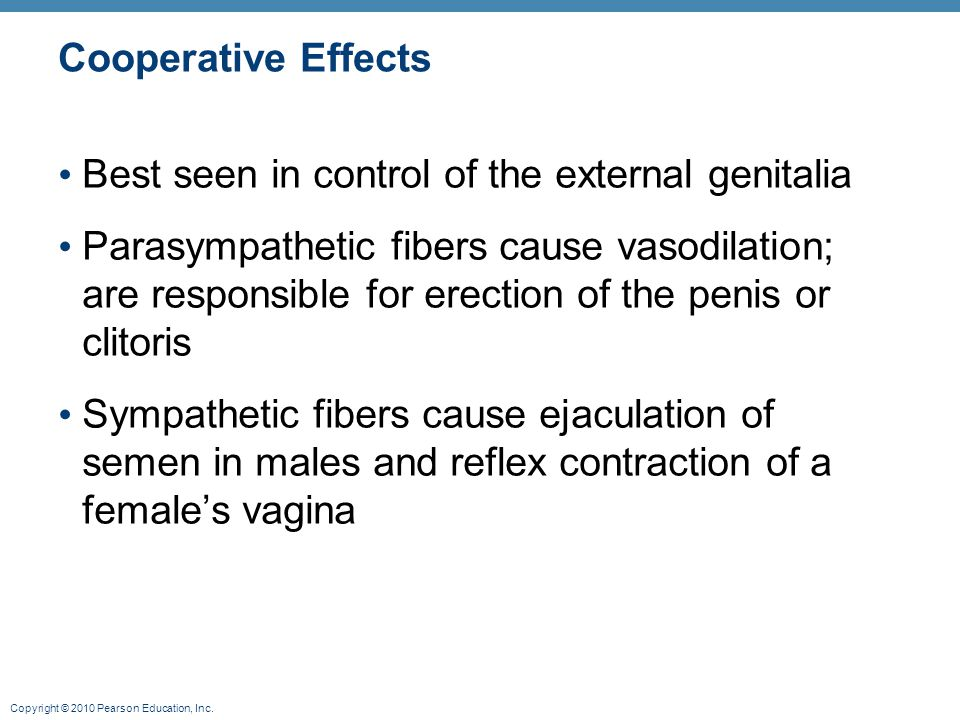 Cooperative Effects Best seen in control of the external genitalia.