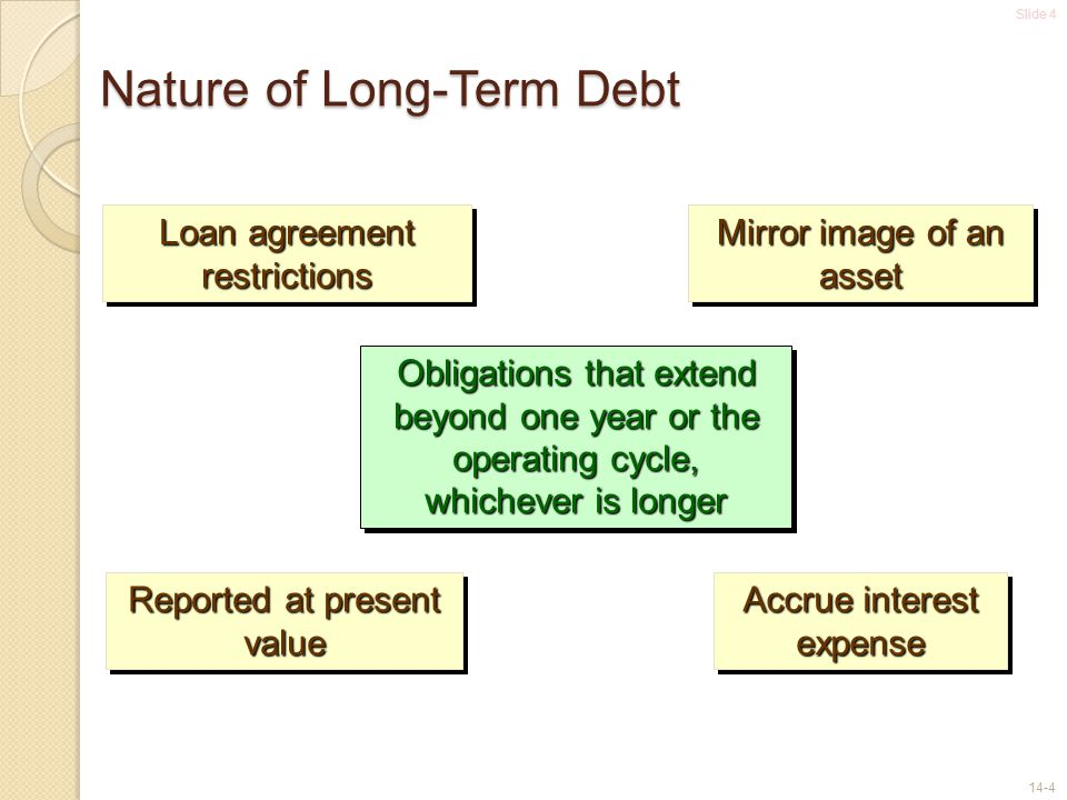 Nature of Long-Term Debt