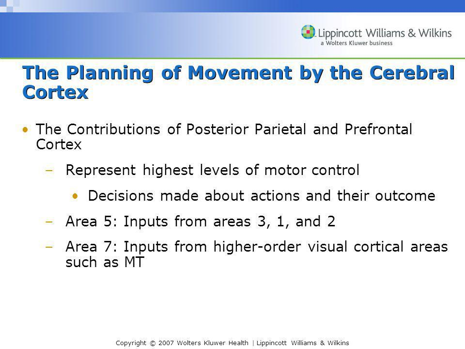 The Planning of Movement by the Cerebral Cortex