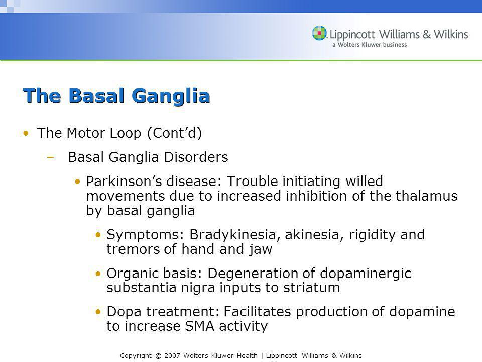 The Basal Ganglia The Motor Loop (Cont'd) Basal Ganglia Disorders