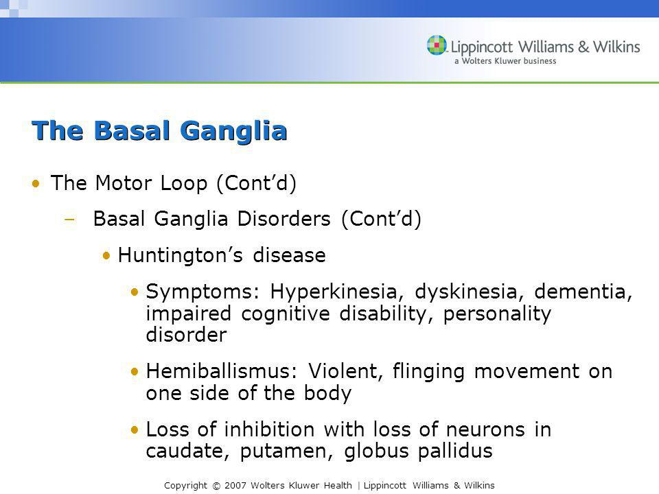 The Basal Ganglia The Motor Loop (Cont'd)