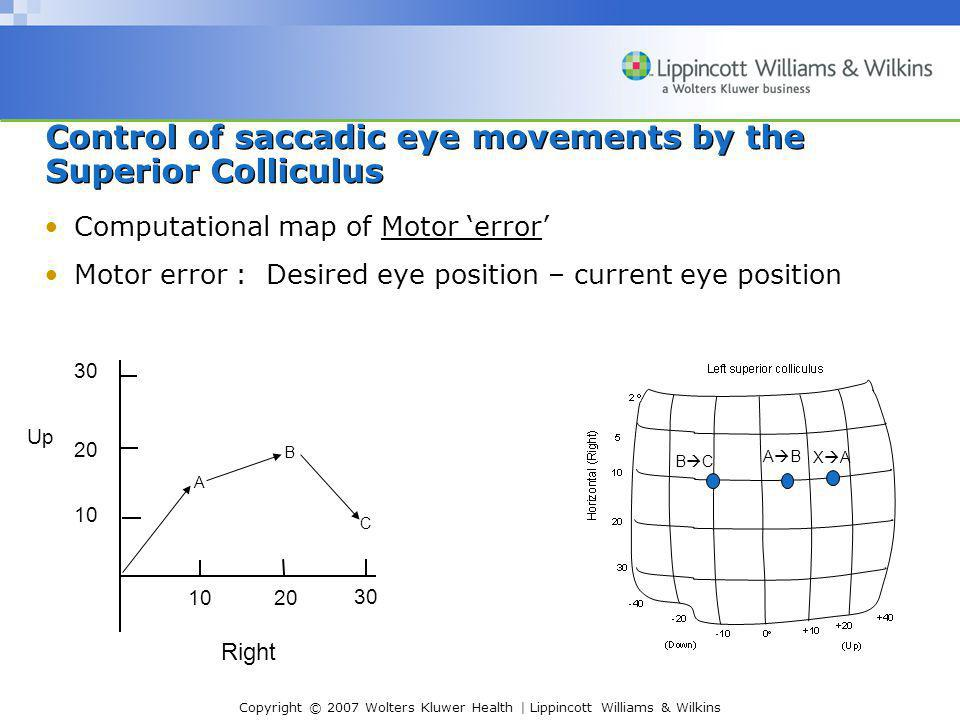 Control of saccadic eye movements by the Superior Colliculus