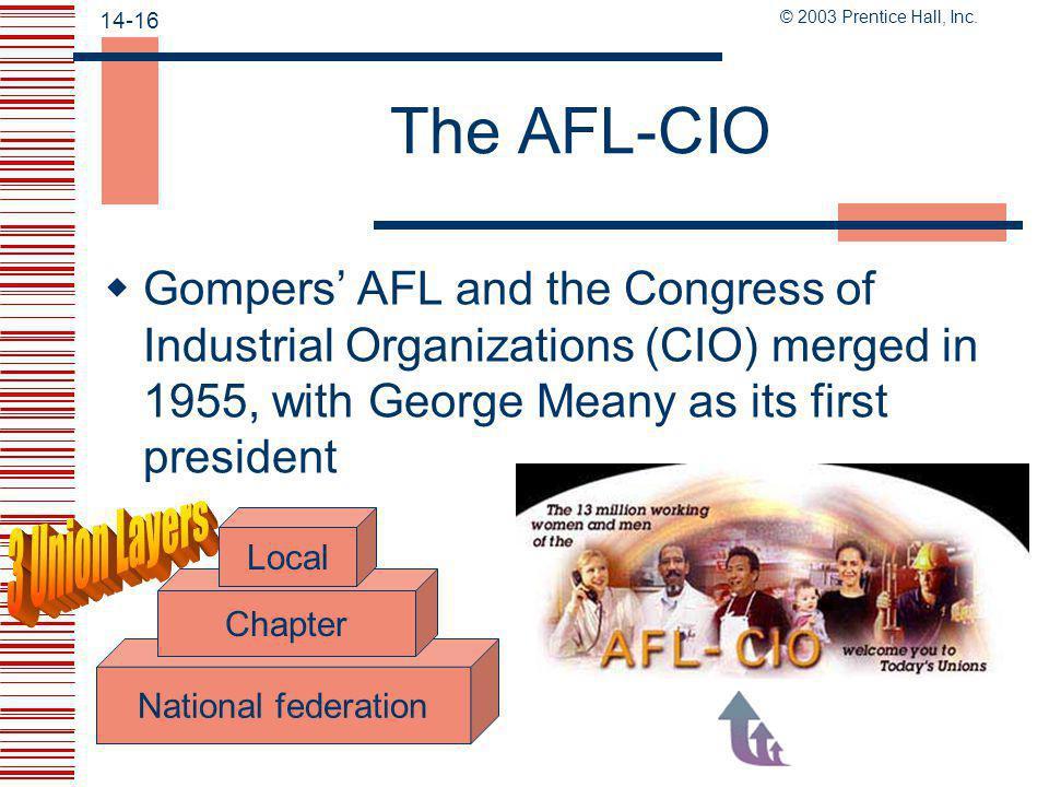The AFL-CIO 3 Union Layers