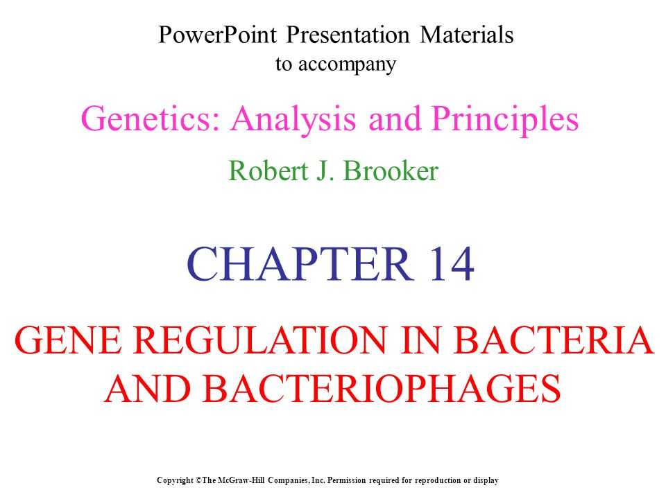 PowerPoint Presentation Materials to accompany