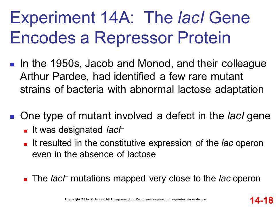 Experiment 14A: The lacI Gene Encodes a Repressor Protein