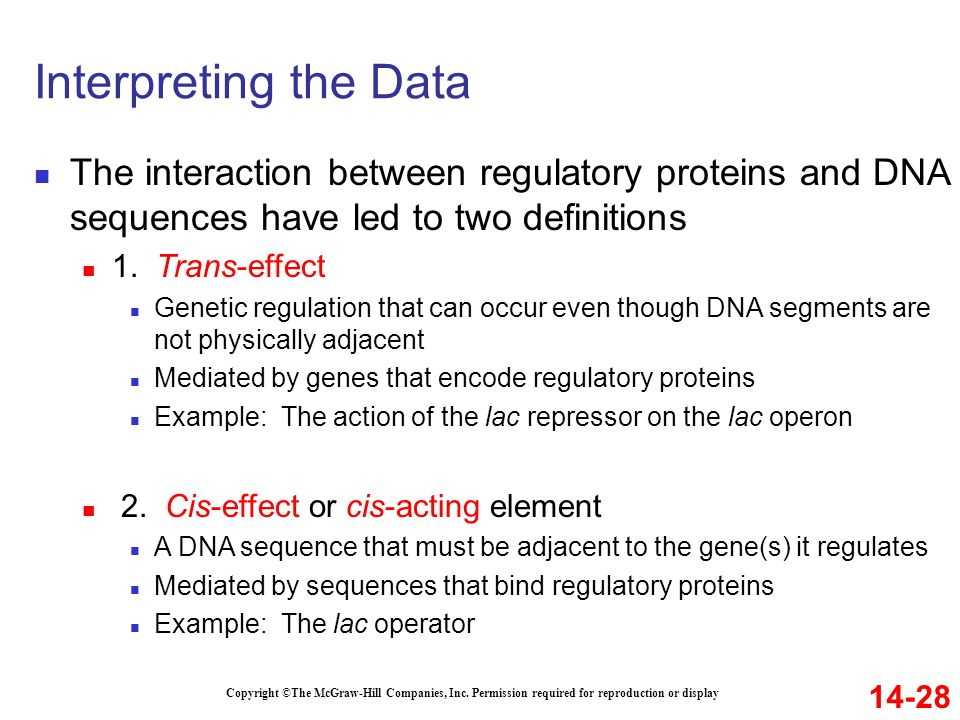Interpreting the Data The interaction between regulatory proteins and DNA sequences have led to two definitions.