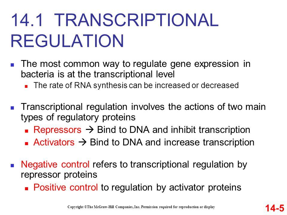 14.1 TRANSCRIPTIONAL REGULATION