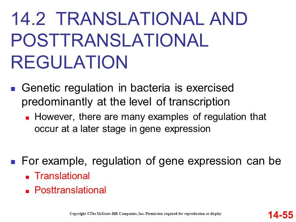 14.2 TRANSLATIONAL AND POSTTRANSLATIONAL REGULATION