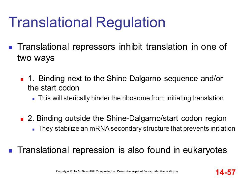 Translational Regulation