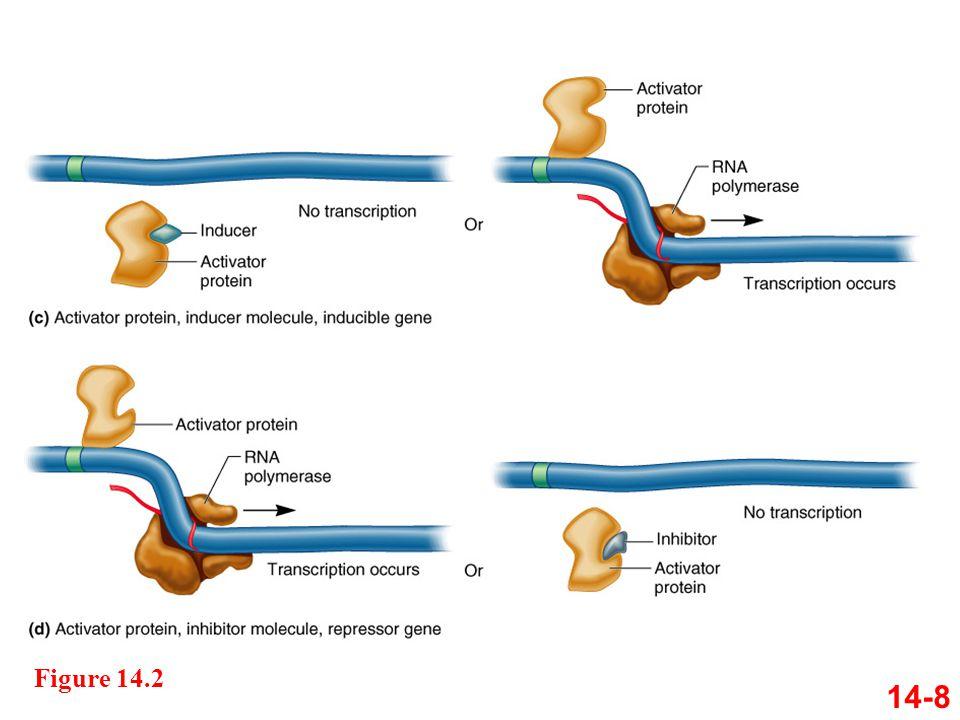 Figure 14.2 14-8
