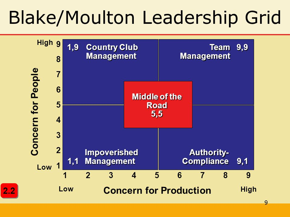 Blake/Moulton Leadership Grid