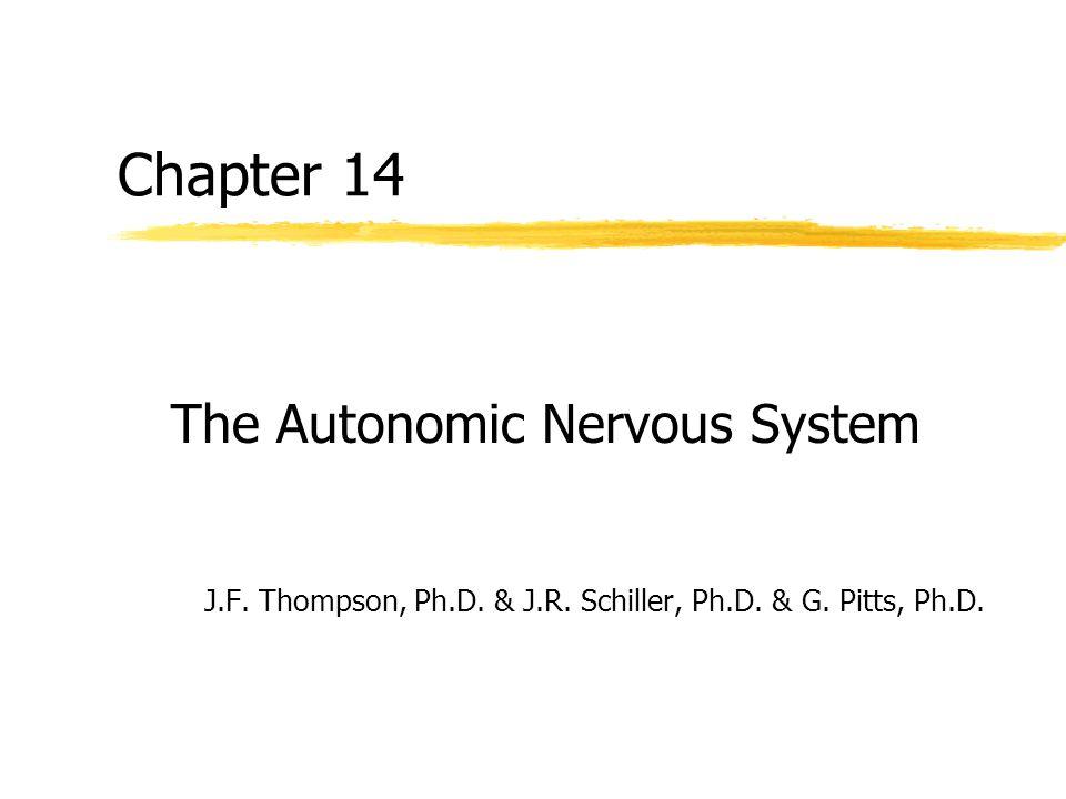 Chapter 14 The Autonomic Nervous System