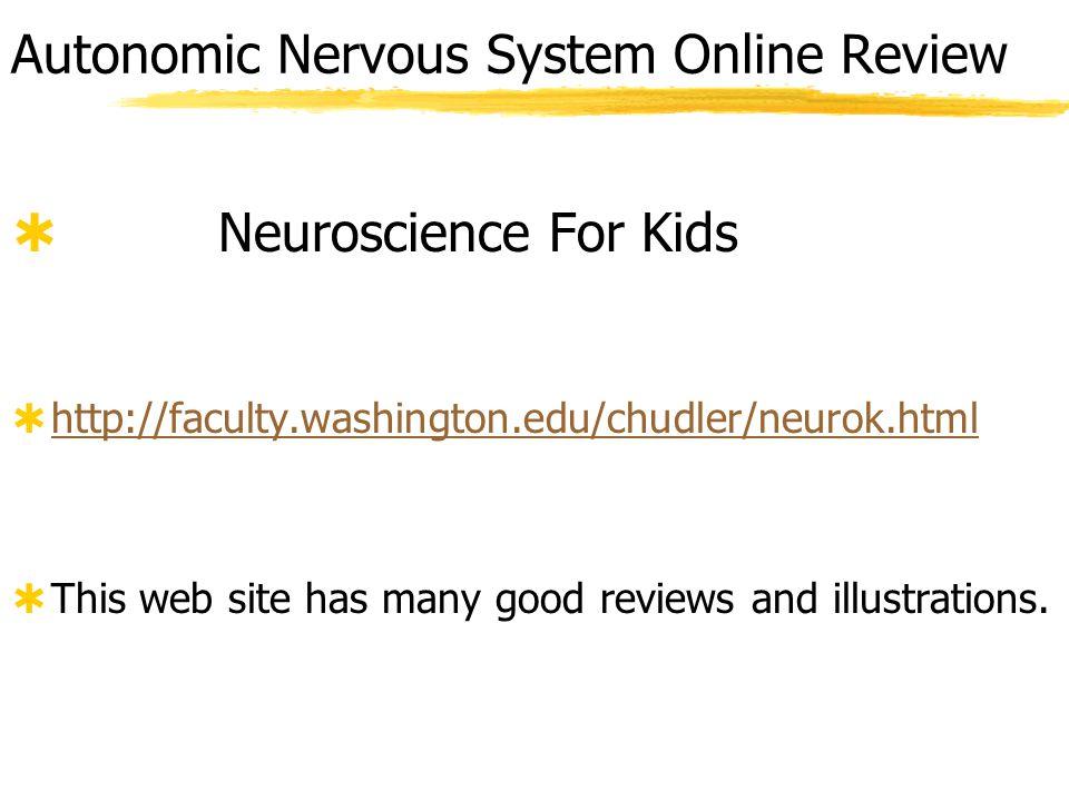 Autonomic Nervous System Online Review