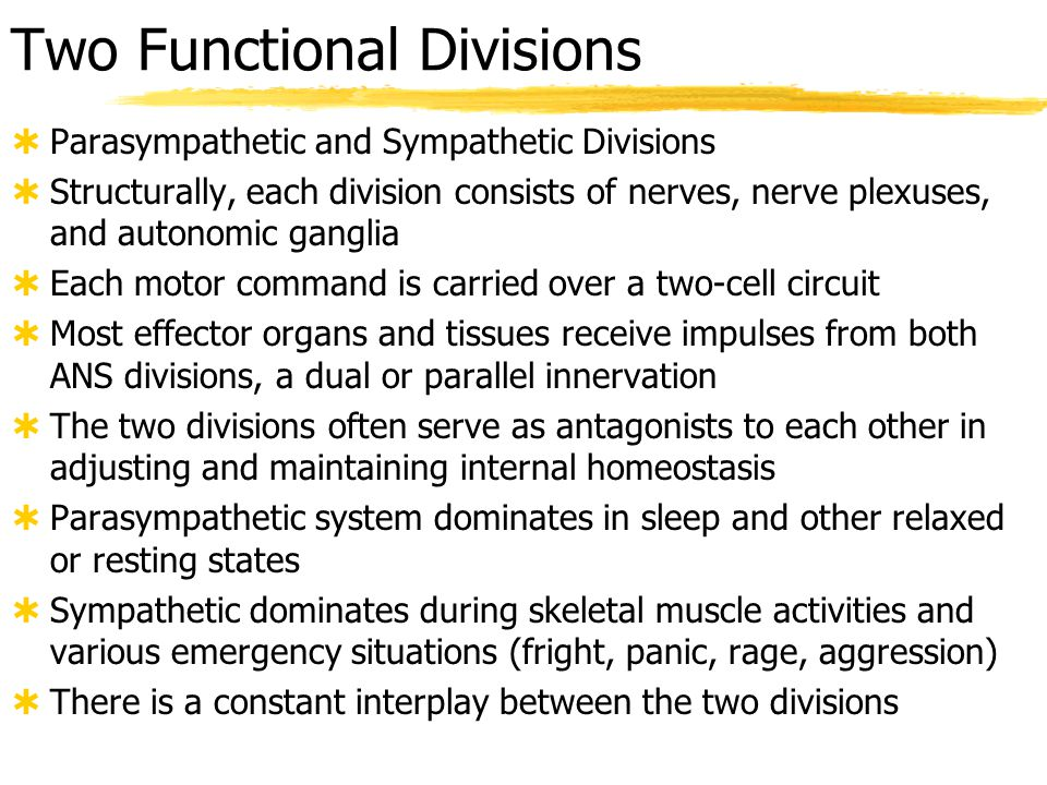 Two Functional Divisions
