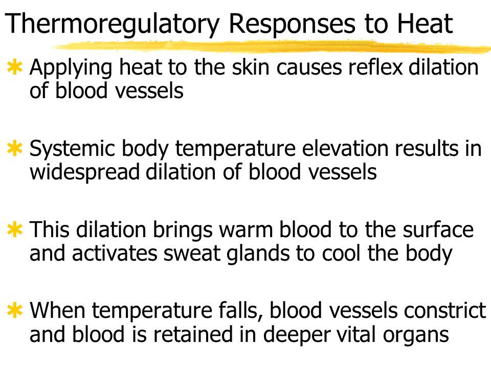 Thermoregulatory Responses to Heat