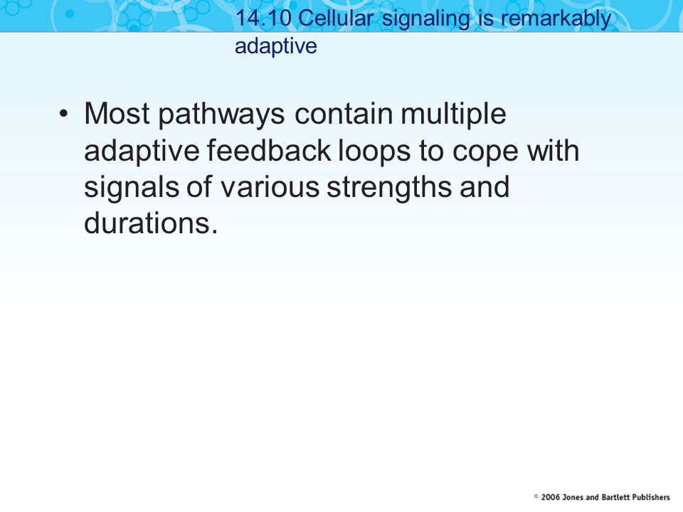 14.10 Cellular signaling is remarkably adaptive