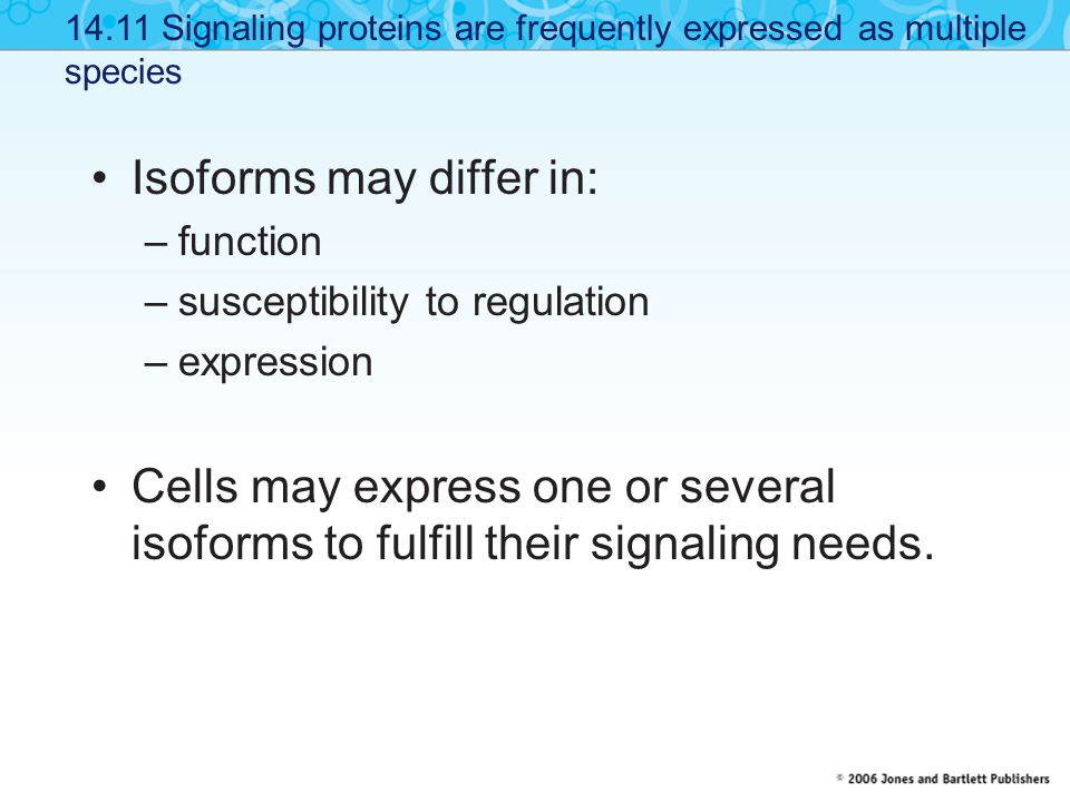 Isoforms may differ in: