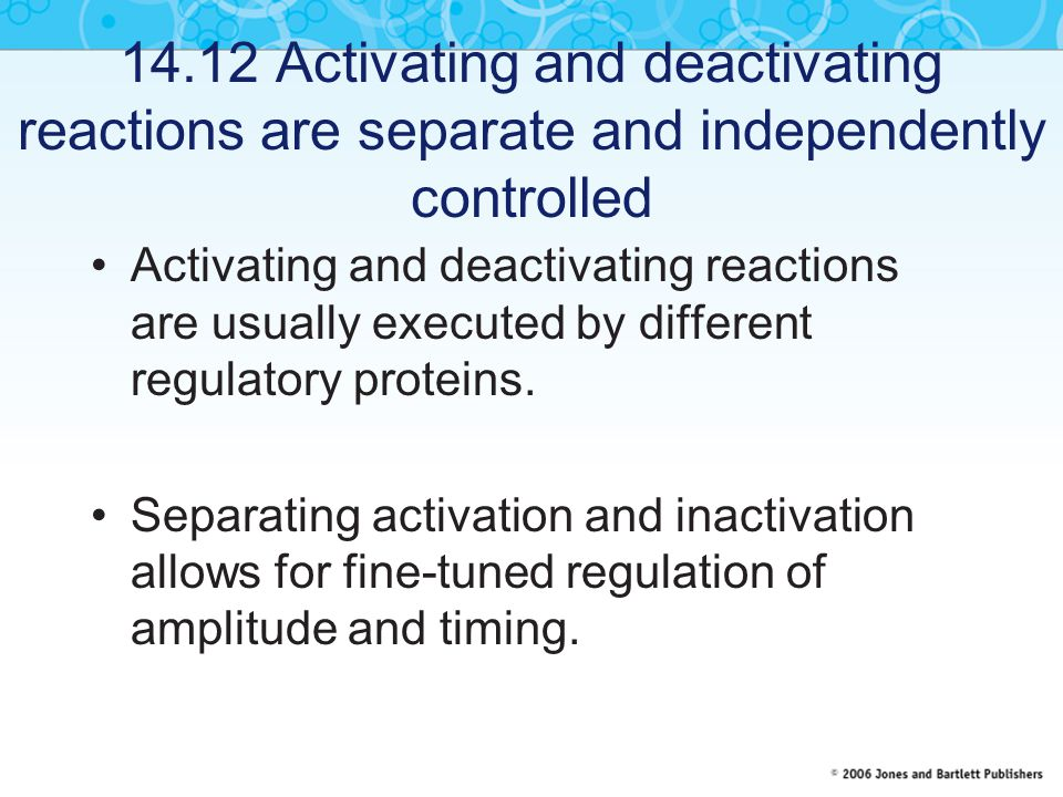 14.12 Activating and deactivating reactions are separate and independently controlled