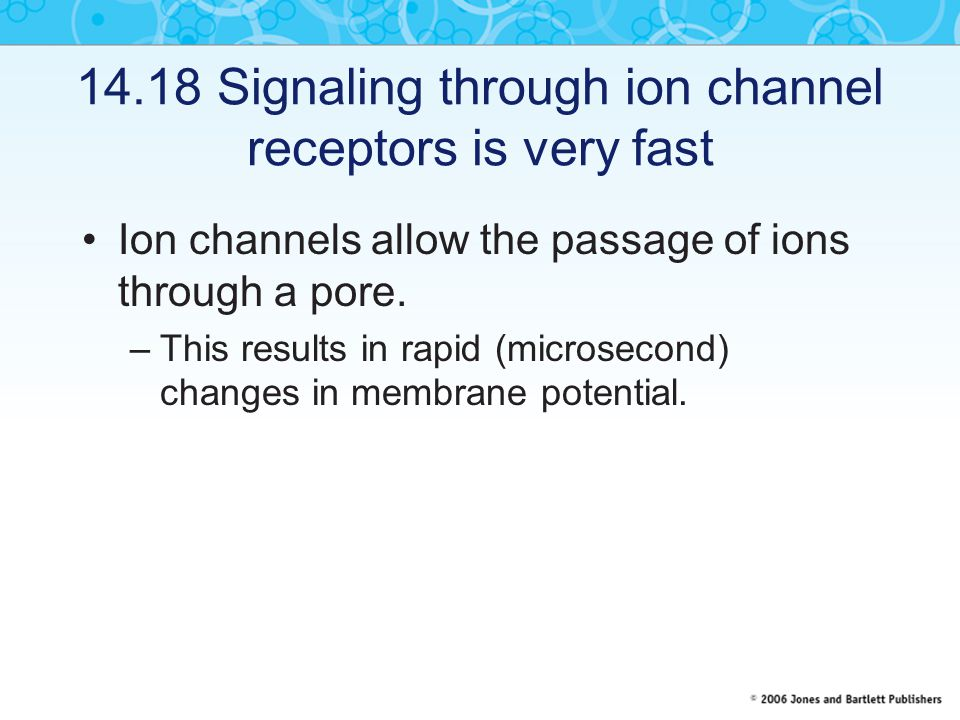 14.18 Signaling through ion channel receptors is very fast