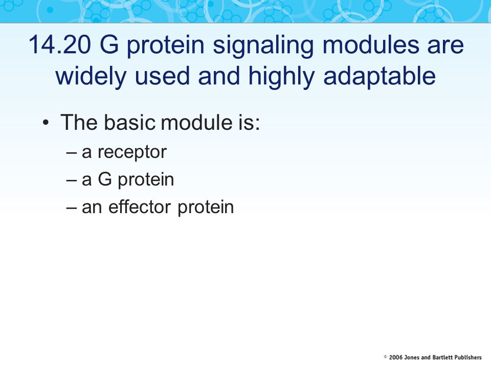 14.20 G protein signaling modules are widely used and highly adaptable
