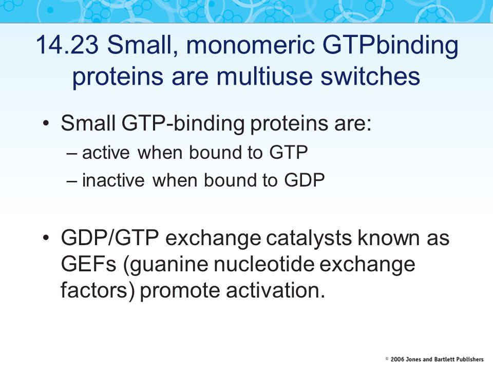 14.23 Small, monomeric GTPbinding proteins are multiuse switches